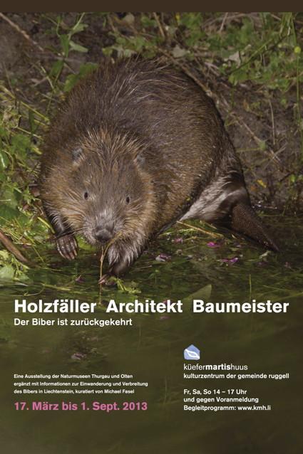 Holzfäller Architekt Baumeister. Der Biber ist zurückgekehrt.